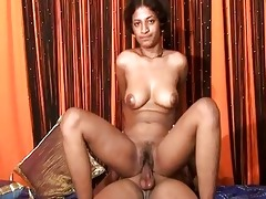 indian doxy bounces around on a large hard jock