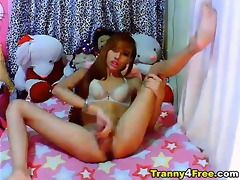 see this playgirl oriental ladyboy have a fun